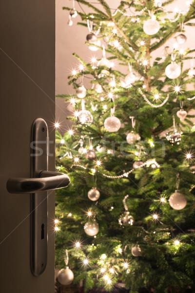 Natal fechar abrir a porta decorado brilhante árvore de natal Foto stock © franky242