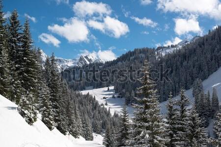 Esquí valle esquí Resort sol naturaleza Foto stock © franky242