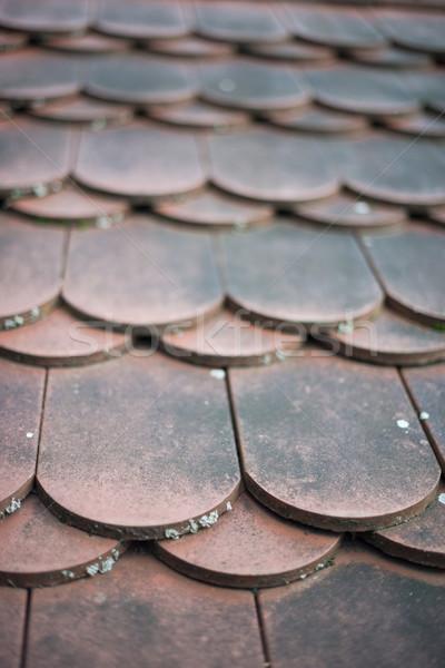 Casa velha vermelho telhado azulejos pormenor resistiu Foto stock © franky242