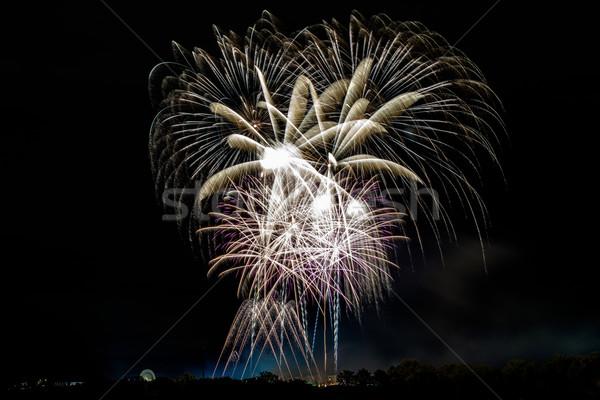 Belo colorido fogos de artifício profissional céu noturno árvores Foto stock © franky242