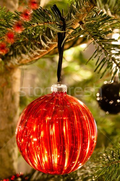 Natal decorativo decoração enforcamento pinho Foto stock © franky242