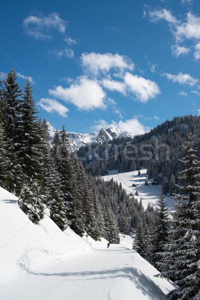 Ski vallée ski Resort ciel sport Photo stock © franky242