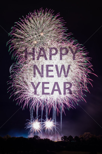 Happy New Year with fireworks Stock photo © franky242
