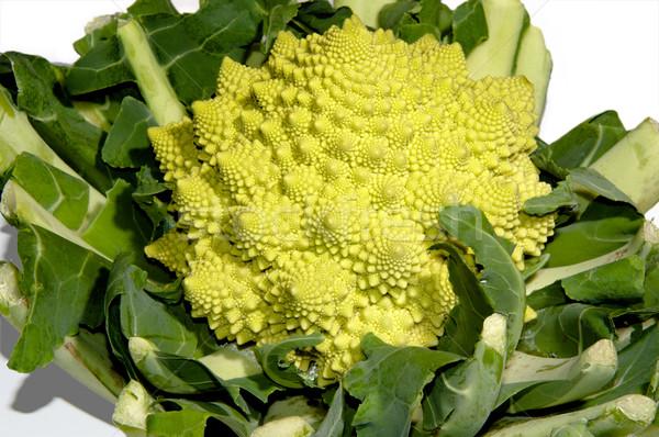 Italiano brócolis repolho isolado branco flor Foto stock © franky242