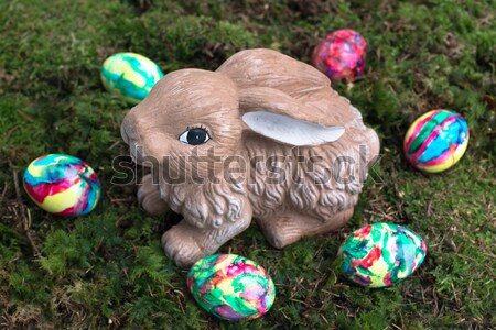 Wielkanoc dekoracji malowany jaj królik mech Zdjęcia stock © franky242