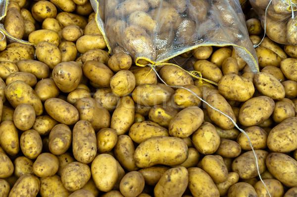 Batatas coleção vendido grande mercado saúde Foto stock © franky242
