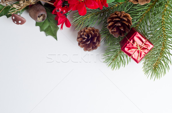 Christmas Flora Border Stock photo © frannyanne