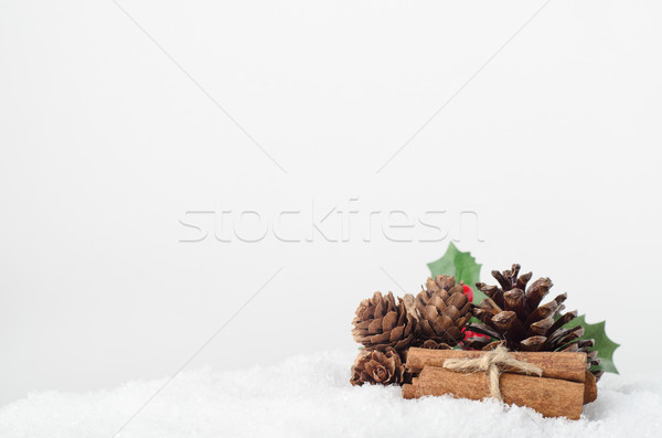 Christmas Foliage and Cinnamon Sticks in Snow Stock photo © frannyanne
