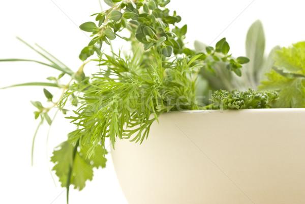 Fresh Herbs Closeup Rframe Stock photo © frannyanne