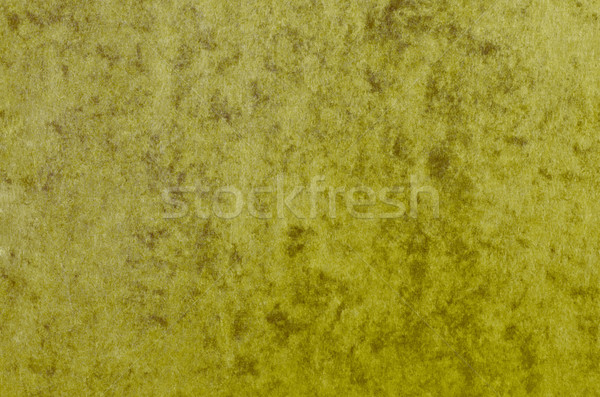Marbled Green Paper Texture Stock photo © frannyanne