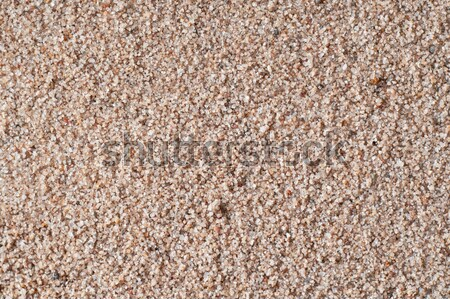Golden Gritty Sand Closeup Background Texture Stock photo © frannyanne