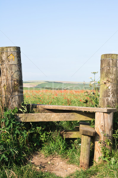 Poppy Field and Country Stile Stock photo © frannyanne