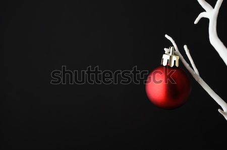 Red Christmas Bauble on white tree Stock photo © frannyanne