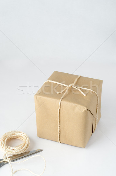 Brown Paper Parcel Tied with String  Stock photo © frannyanne