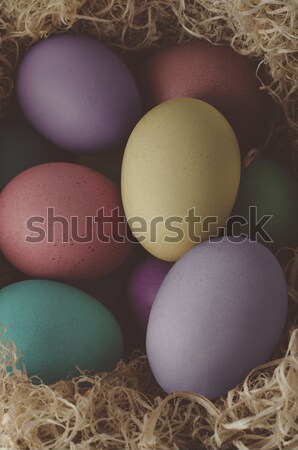 Painted Easter Eggs Nesting - Cross Processed Stock photo © frannyanne