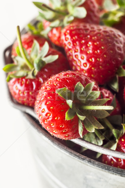 Stock photo: Metal Pail Filled with Ripe Strawberries