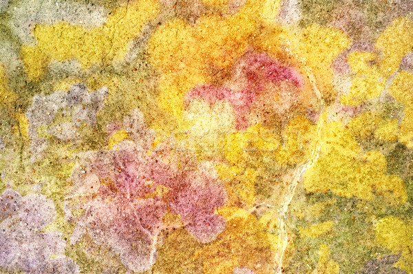 Abstract Stone Texture Stock photo © frannyanne
