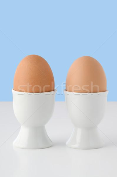 2 ブラウン 卵 白 卵 ストックフォト © frannyanne