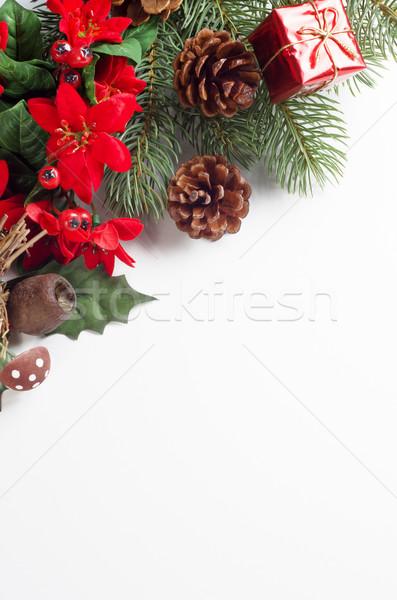 Christmas Flora Corner Border Stock photo © frannyanne
