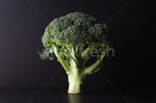 Broccoli Tree Shape on Black Stock photo © frannyanne