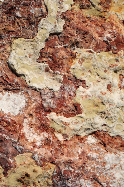 Abstract Rock Texture in Autumnal Hues Stock photo © frannyanne