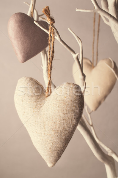 Crafted Hearts Hanging from Tree in Faded Soft Pinks Stock photo © frannyanne