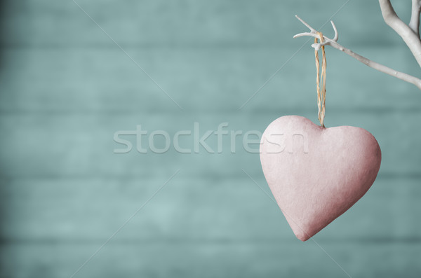 Pink Heart on White Tree with Turquoise Wood Plank Background Stock photo © frannyanne