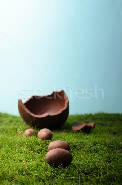 Chocolate Easter Eggs on Grass with Blue Sky Stock photo © frannyanne