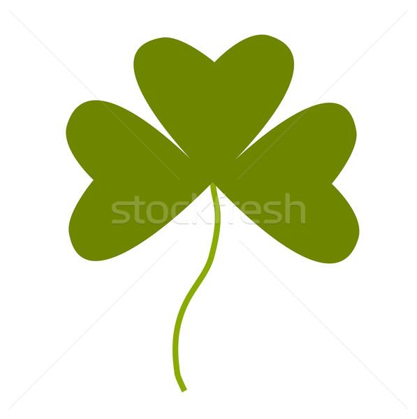 Shamrock ilustração verde branco folha planta Foto stock © frannyanne
