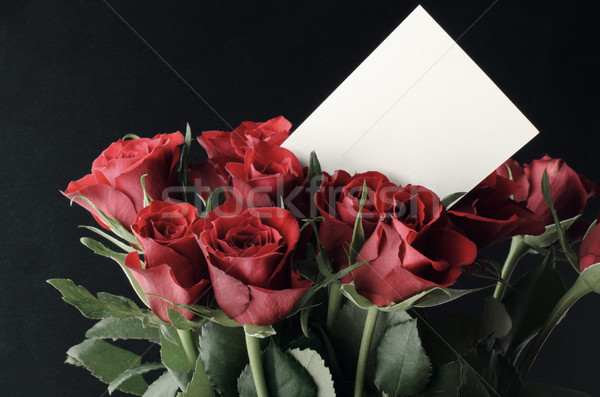 Bunch of Red Roses with Blank White Message Card Stock photo © frannyanne