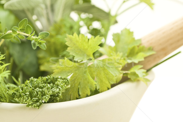 Herbs with Pestle and Mortar Closeup Lframe Stock photo © frannyanne