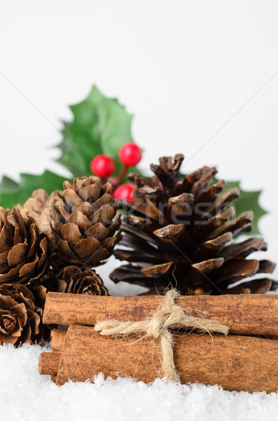 Christmas Foliage and Cinnamon Stick Bundle in Snow Stock photo © frannyanne