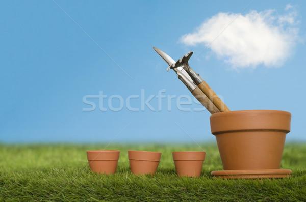 Plant Potting Equipment Stock photo © frannyanne