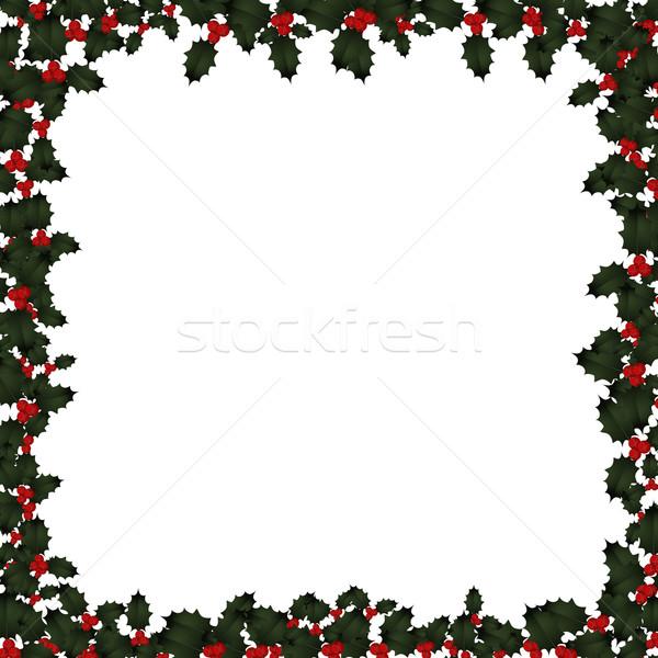 Natale frame bianco illustrazione foglie frutti di bosco Foto d'archivio © frannyanne