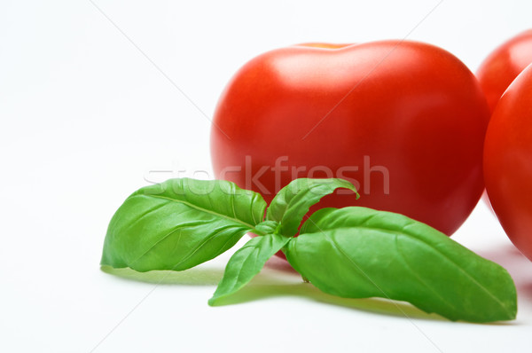 Fresh Tomatoes and Basil Stock photo © frannyanne