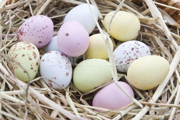 Nest of Coloured Eggs Stock photo © frannyanne