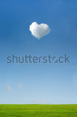 Heart Shaped White Cloud in Blue Sky over Green Grass Stock photo © frannyanne