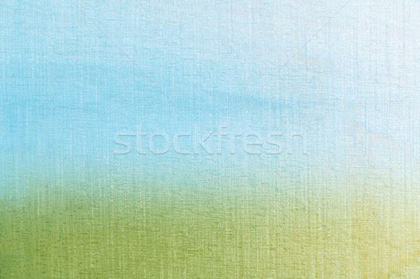 Grass and Sky Textured Background Stock photo © frannyanne