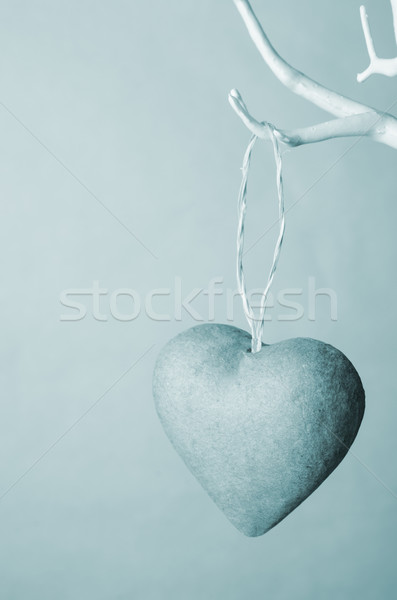 Coeur suspendu arbre blues une Photo stock © frannyanne