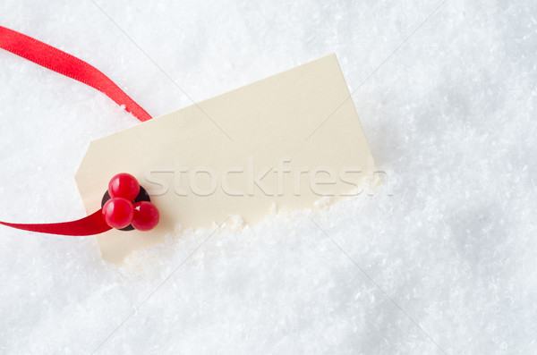 Christmas Gift Tag in Snow Stock photo © frannyanne
