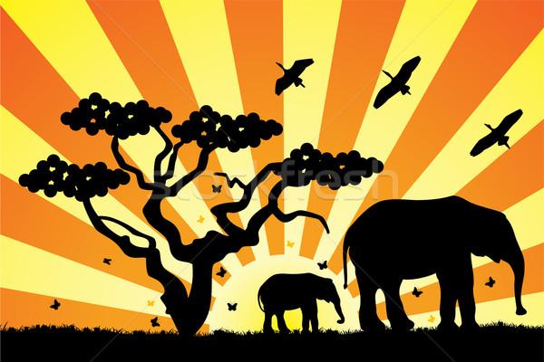 ベクトル アフリカ 草 森林 自然 ストックフォト © freesoulproduction