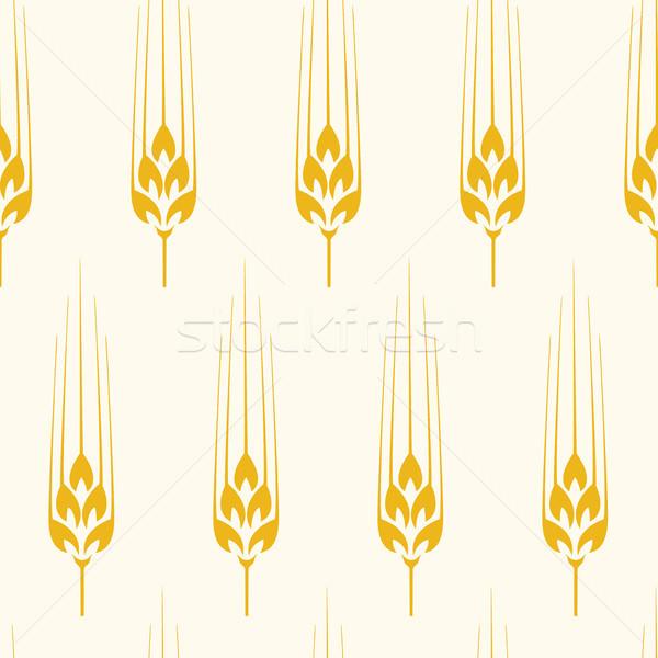 Vector sin costura trigo cebada centeno patrón Foto stock © freesoulproduction