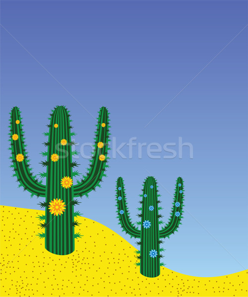 vector cactuses in desert Stock photo © freesoulproduction