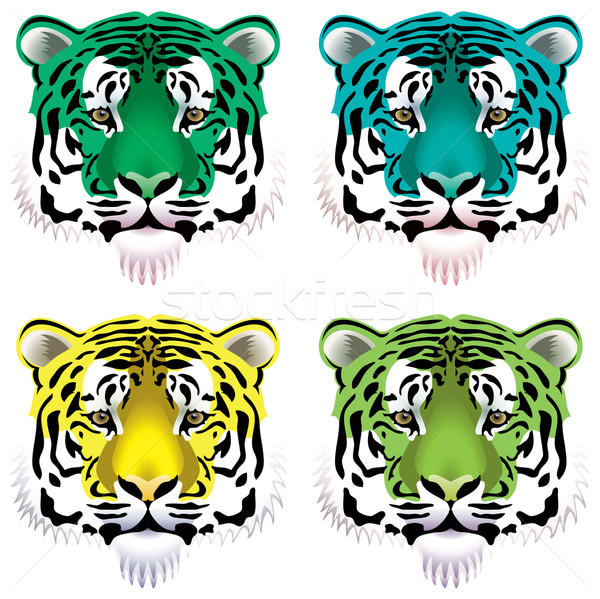 vector tiger heads Stock photo © freesoulproduction