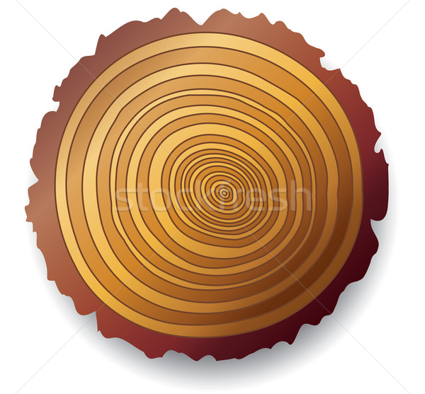 Stock photo: wooden cross-section of a tree
