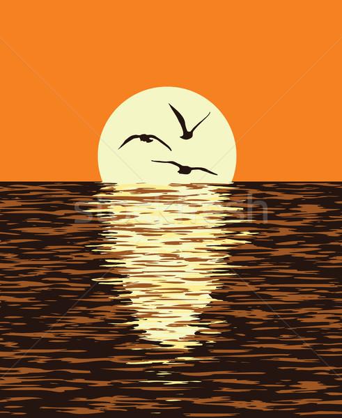 Vecteur mer coucher du soleil soleil illustration Photo stock © freesoulproduction