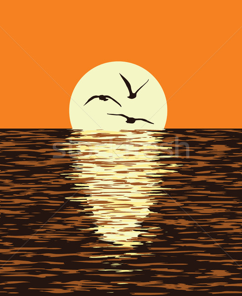 Stockfoto: Vector · zee · avond · zonsondergang · zon · illustratie