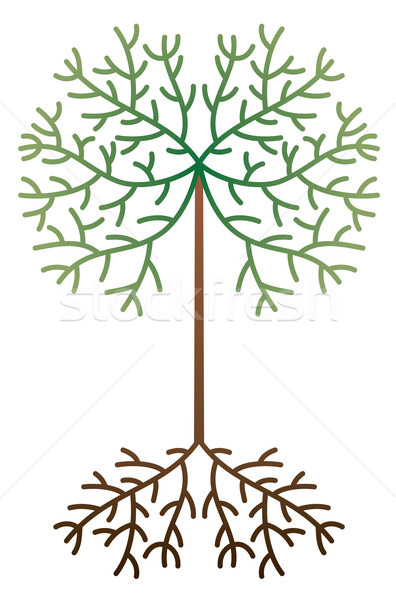 vector abstract tree Stock photo © freesoulproduction