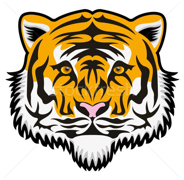 vector  tiger face Stock photo © freesoulproduction
