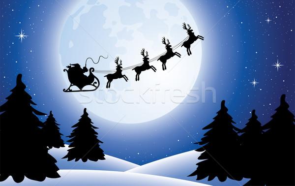 Vector vacaciones navidad hombre naturaleza Foto stock © freesoulproduction
